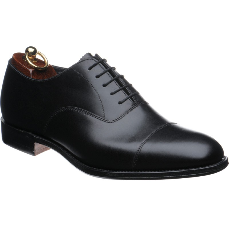 about oxford shoes DNUPLLX
