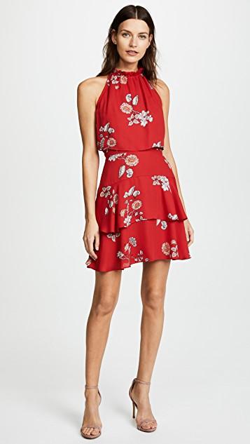 bb dakota cadence floral dress ... TGPDGCW