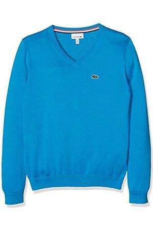 boys jumpers u0026 sweaters - lacoste boyu0027s aj2590 jumper . ERGMTLF