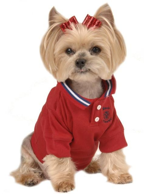 dog clothes maxu0027s closet polo-style dog shirts HWJJAAM