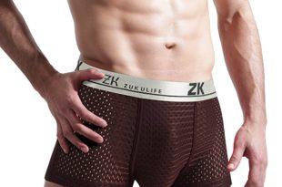mens underwear sexy breathable menu0027s mesh underwear boxer UWRKQVU